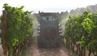 GOPHYTOVID consigue reducir un 30% el uso de fitosanitarios